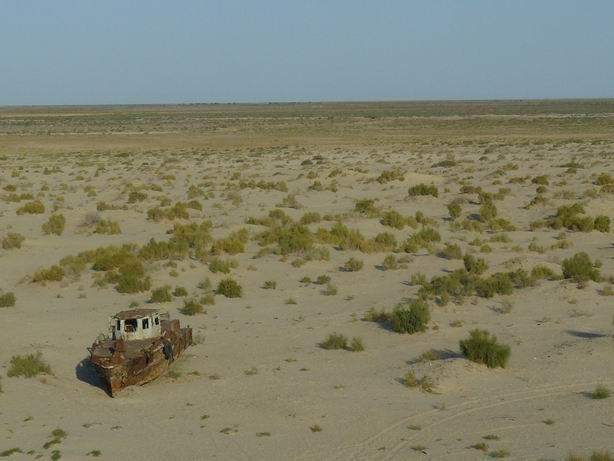 Navegando en la arena